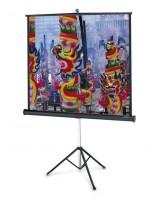 Projecta Professional 178x178 Matte White, mobilus ekranas