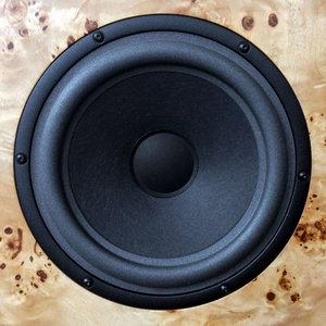 audio-note-an-e-speakers-poplar-burl.jpg